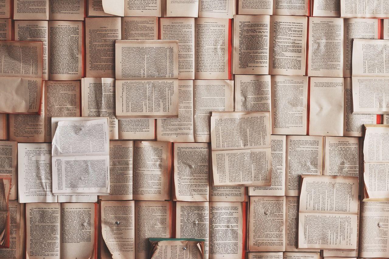 Libros son el lugar para encontrar mentores